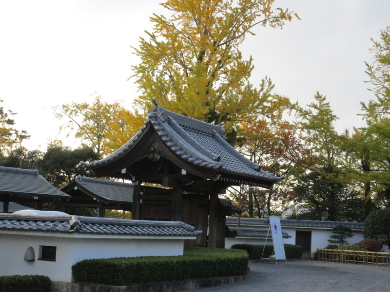 岡崎城へ紅葉見物。歩行訓練も兼ねて行きました。