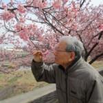 満開の河津桜。春がやってきました♪